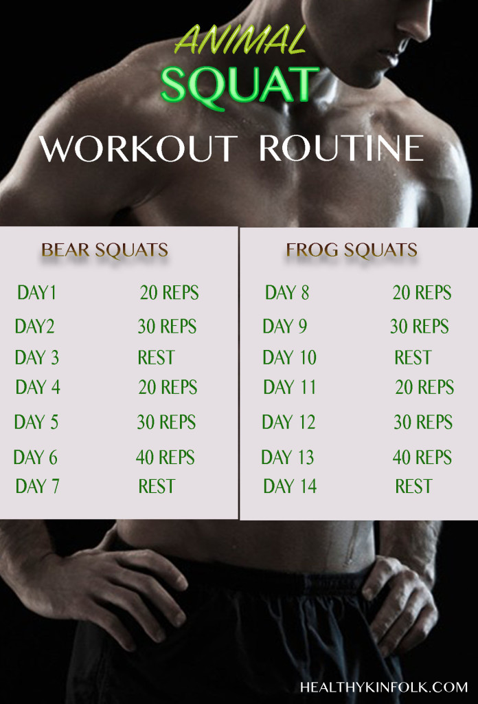 animal squat workout routine